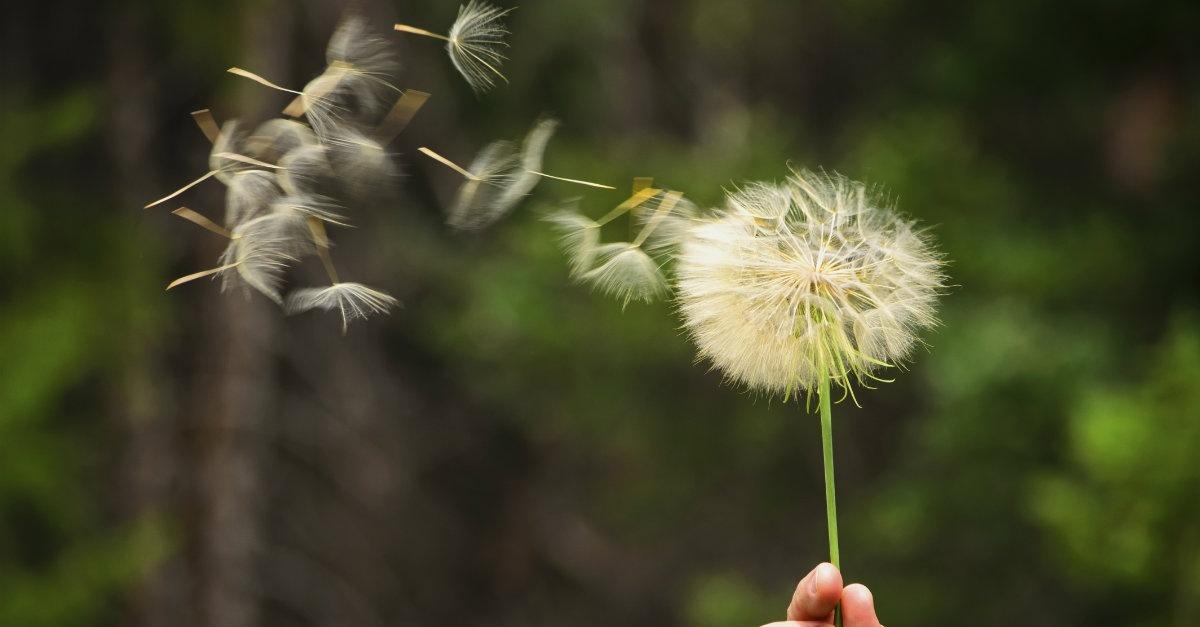 7 Maneiras De Sentir A Presença De Deus Rede Fonte
